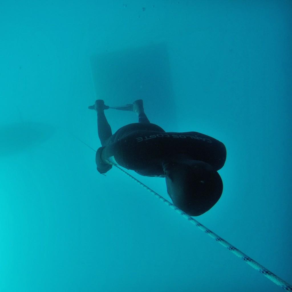 Free Falling Freedive Caribbean