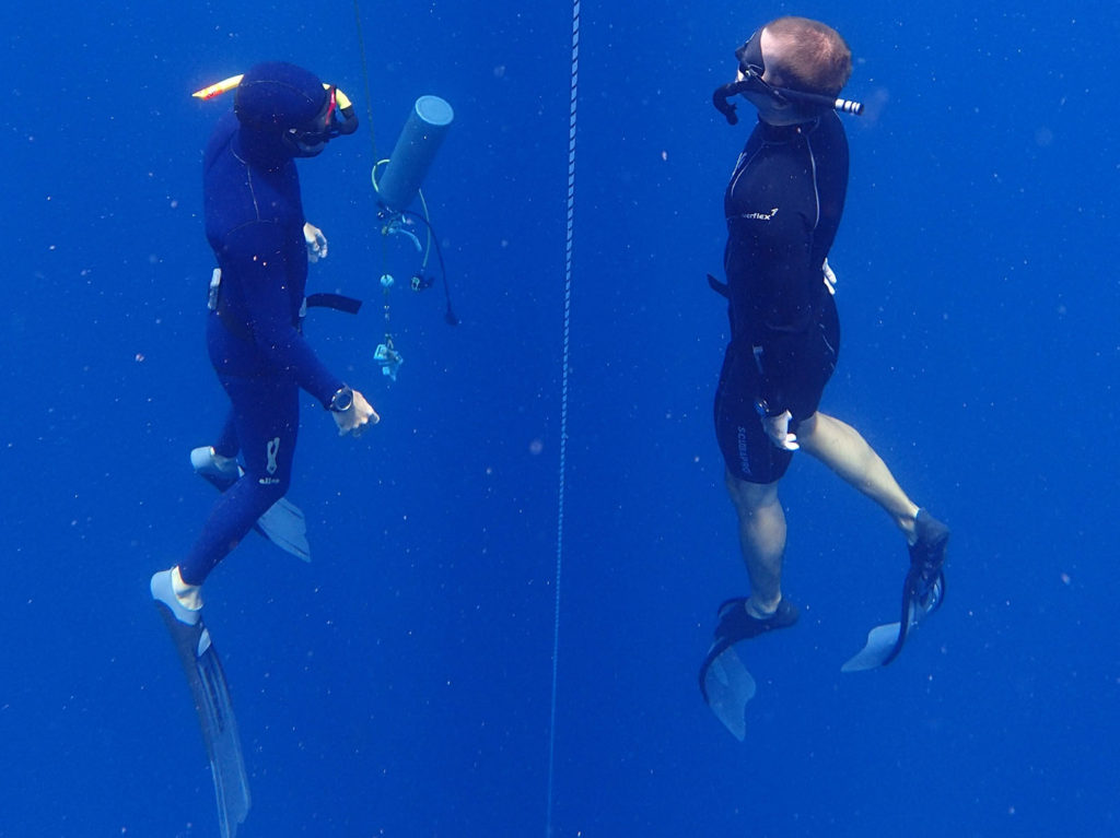 padi-3-freediving-course-in-the-caribbean