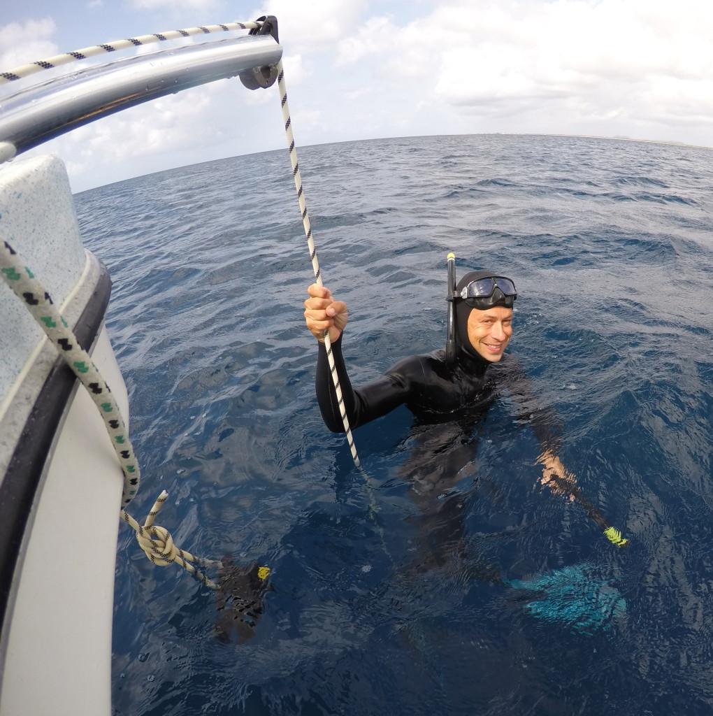 Freediving Caribbean, Deepsea Bonaire, School,