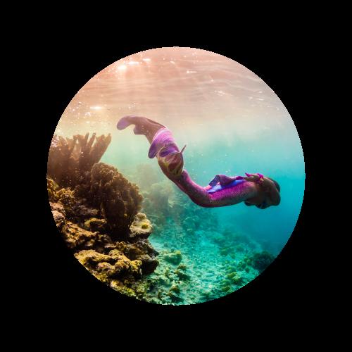 Mermaid Bonaire, Mermaid Bonaire