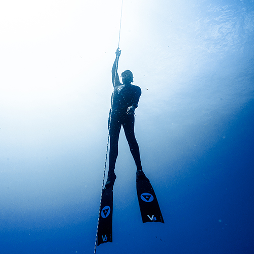 aida freediving courses
