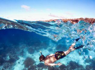 freediving tour