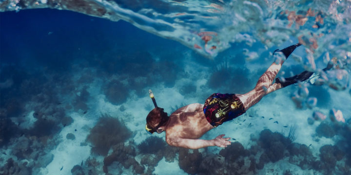 Freediving Courses & Coaching, Home