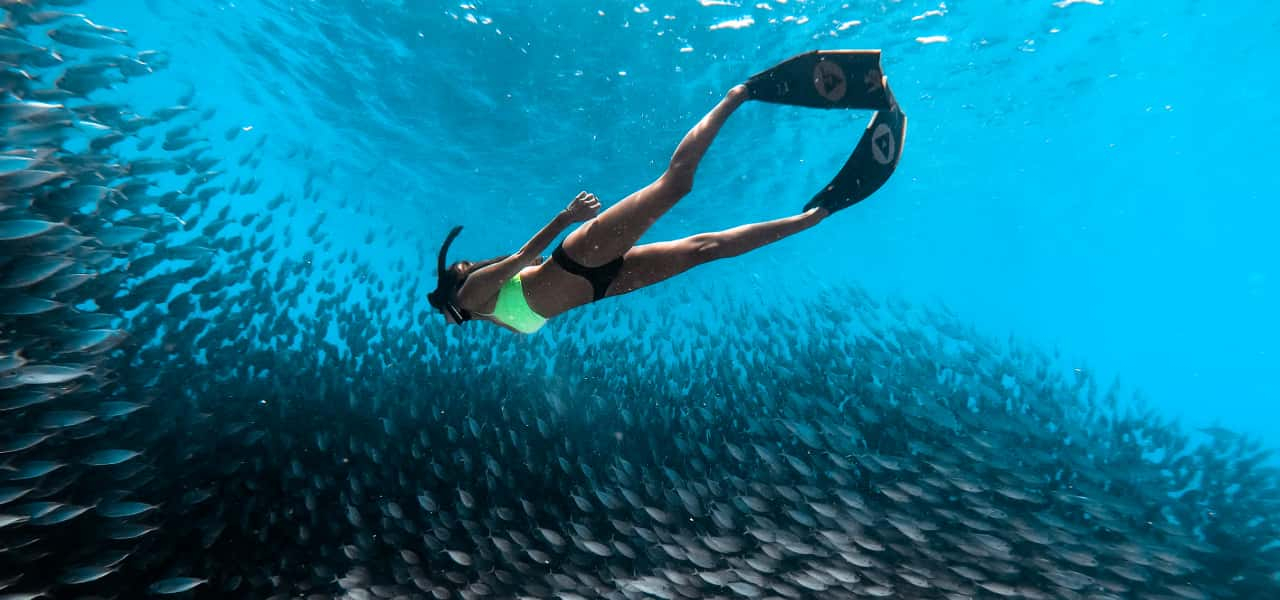 dive weightless